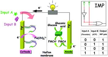 "Graphical abstract: An IMP-Reset gate-based reusable and self-powered ""smart"" logic aptasensor on a microfluidic biofuel cell"